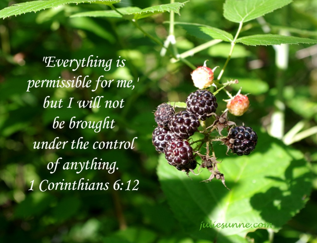 everything-permissible-but-not-under-control-