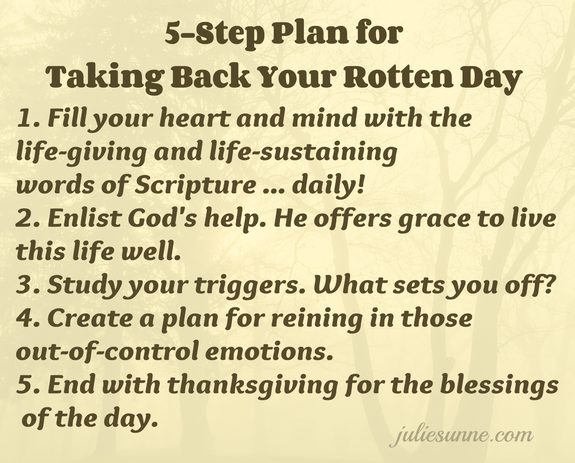 step plan for rotten day julie sunne 5 step plan for rotten day