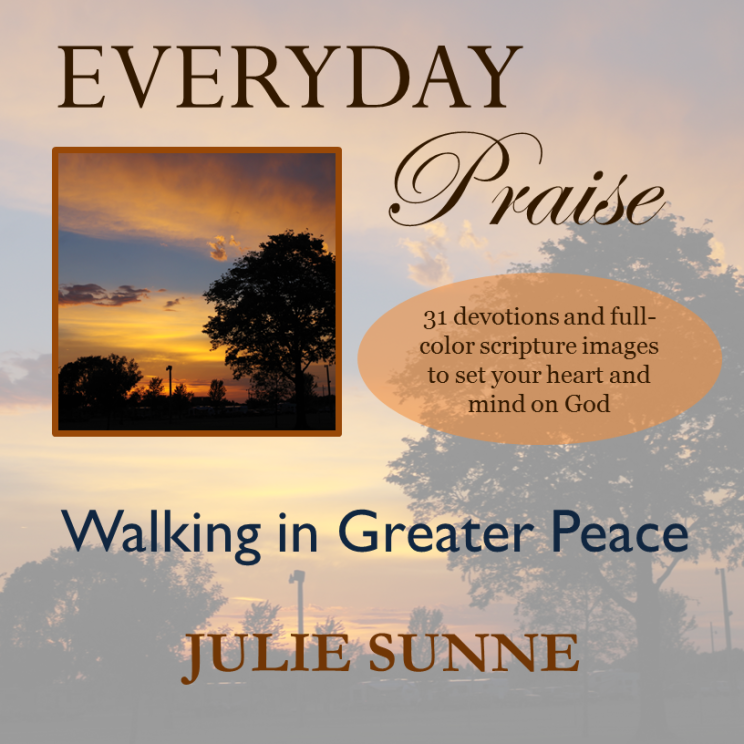 Everyday Praise devotional: faith walk