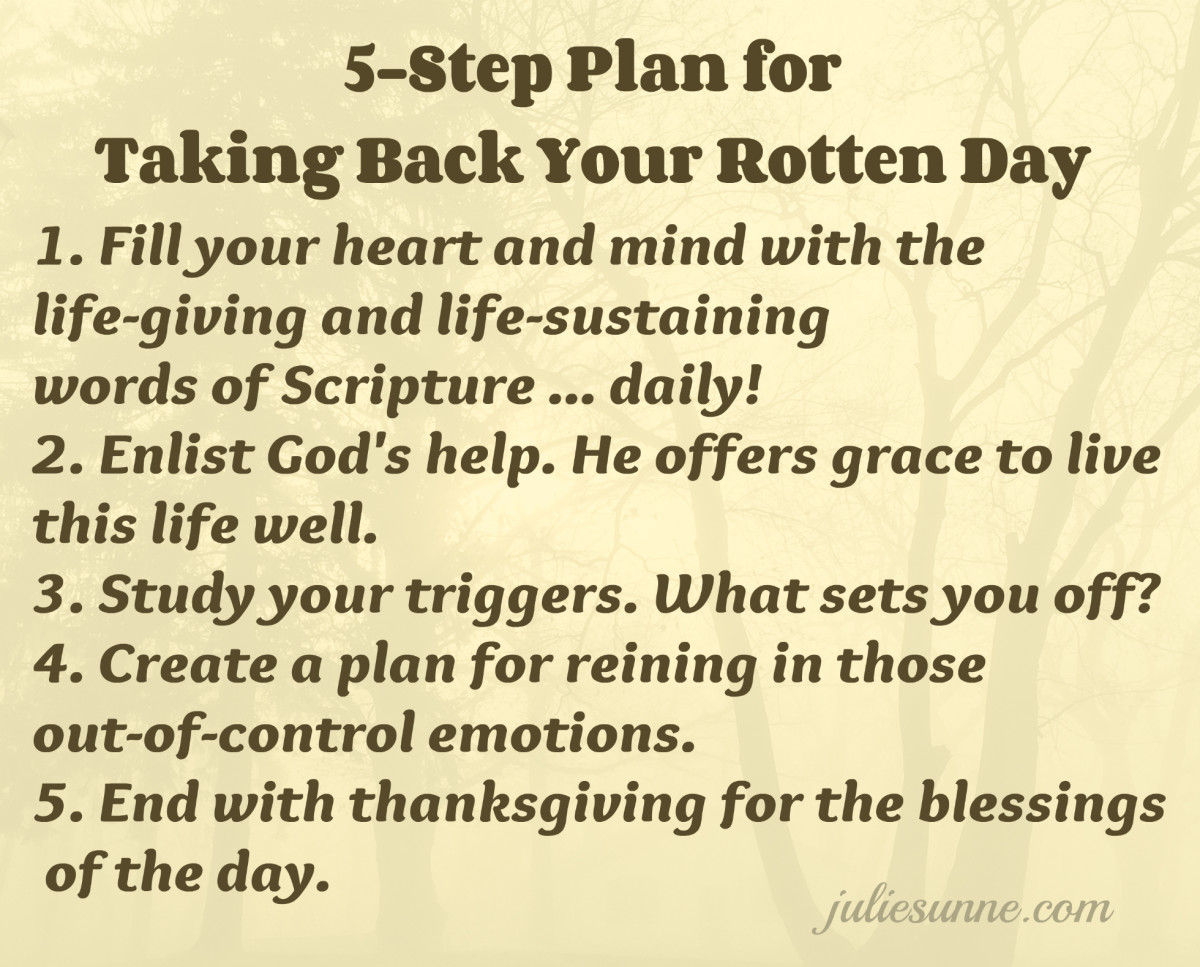 5 step plan for rotten day